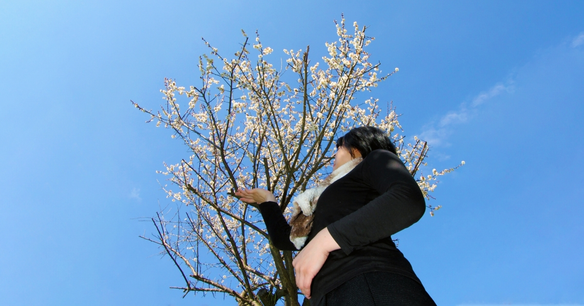 早春賦 - Early Spring Tribute